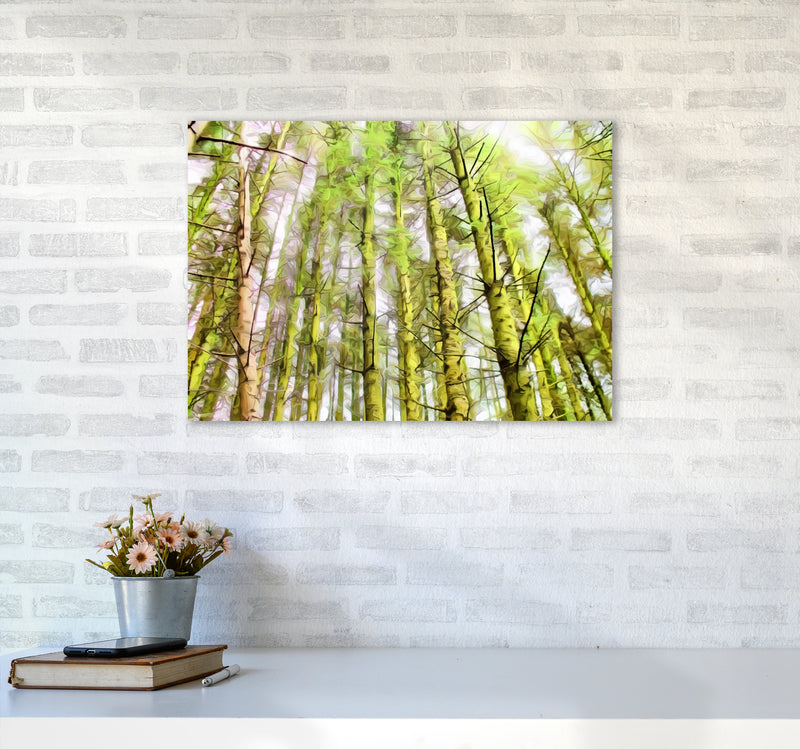 Woodland A2 Black Frame