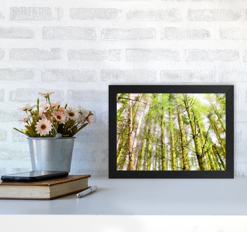 Woodland A4 White Frame