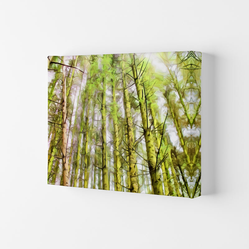 Woodland Canvas