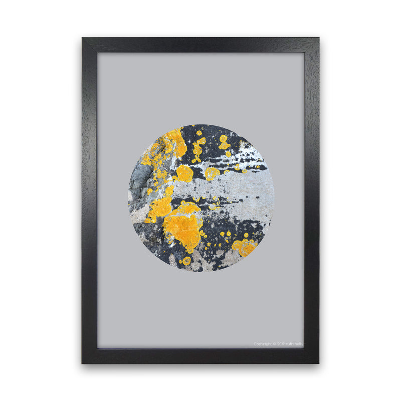 Yellow Moss Circle On Light Grey   by Ruth Holly A1 Black Frame