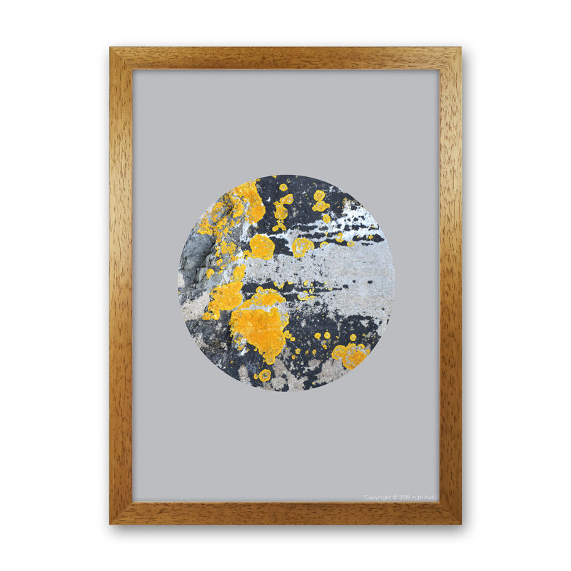 Yellow Moss Circle On Light Grey   by Ruth Holly A1 Oak Frame