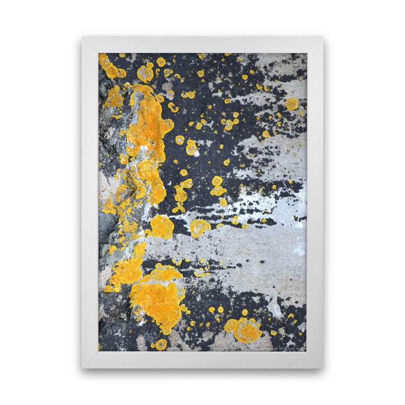 Yellow Moss On Grey Rock   by Ruth Holly A1 White Frame