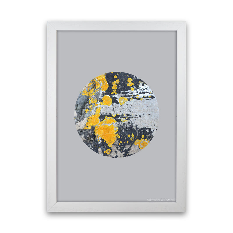 Yellow Moss Circle On Light Grey   by Ruth Holly A1 White Frame