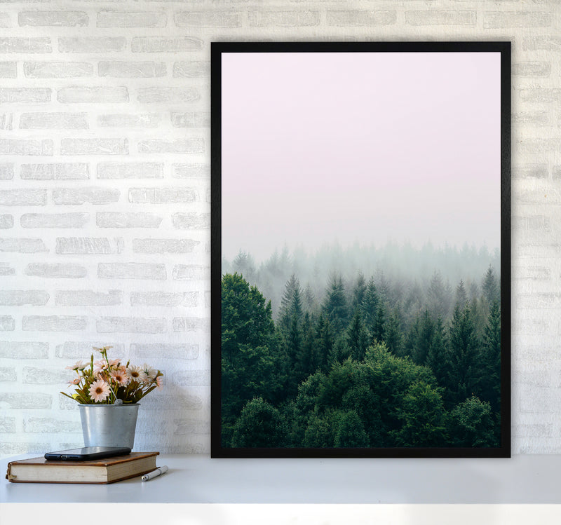 The Fog And The Forest I A1Black Frame