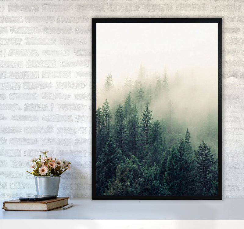 The Fog And The Forest II A1Black Frame