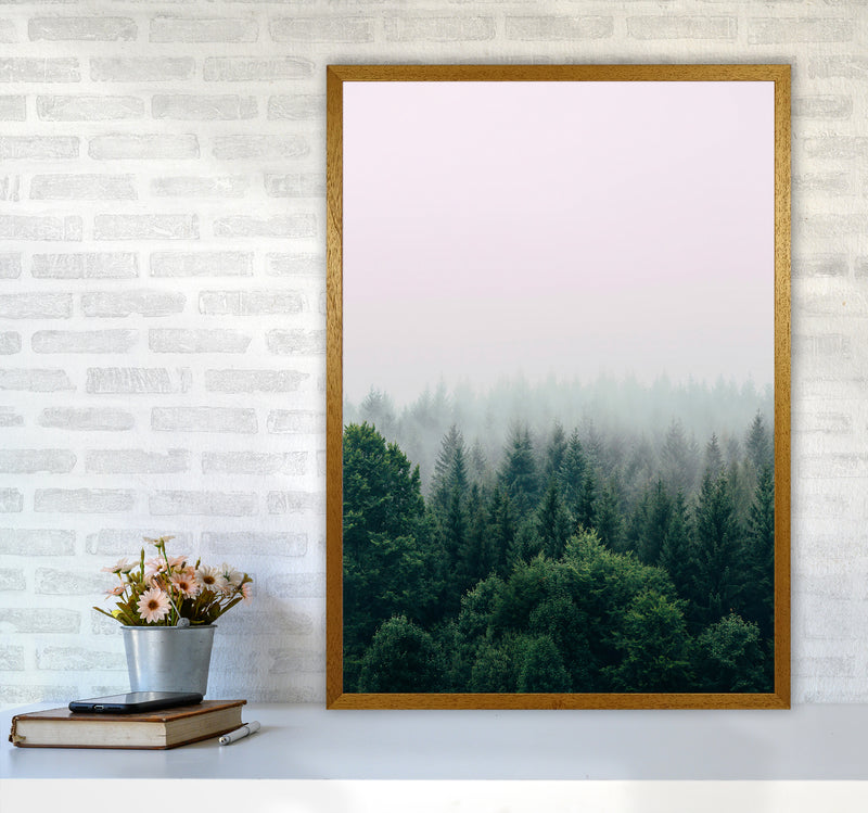 The Fog And The Forest I A1 Oak Frame