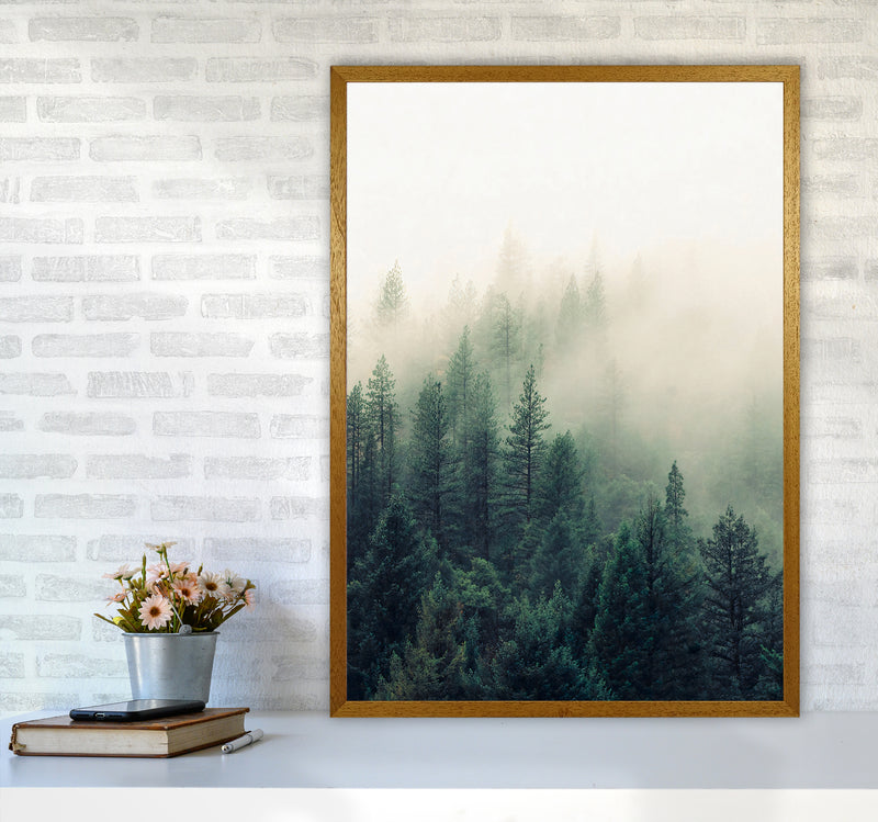 The Fog And The Forest II A1 Oak Frame