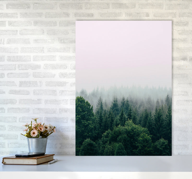 The Fog And The Forest I A1 Print Only