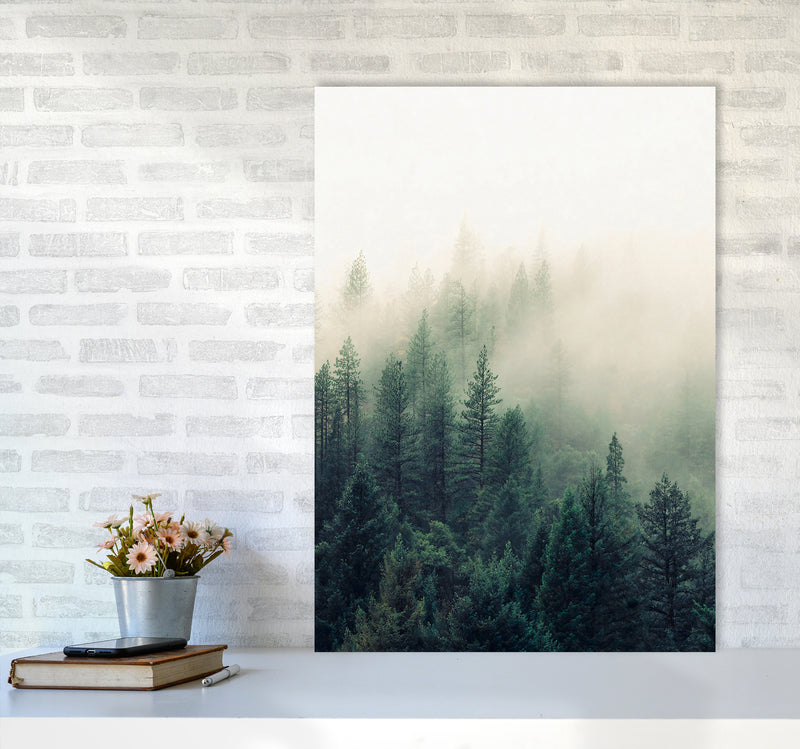 The Fog And The Forest II A1 Print Only
