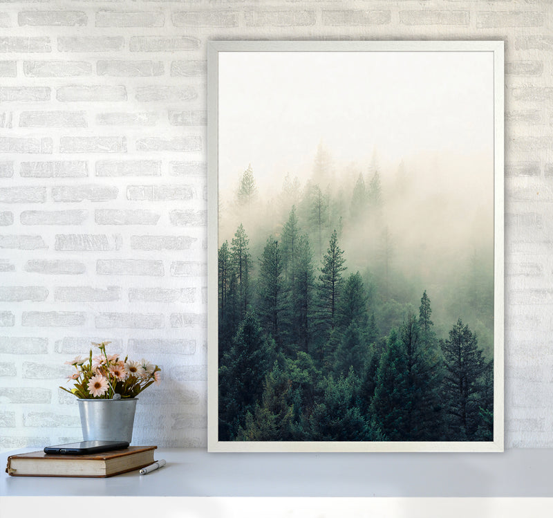 The Fog And The Forest II A1 White Frame