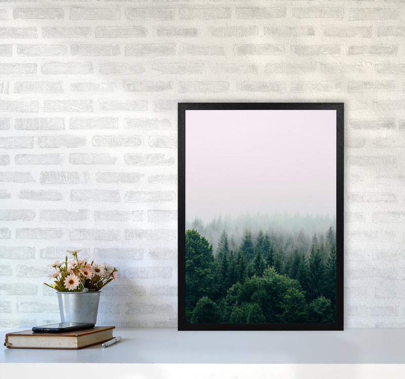 The Fog And The Forest I A2 Black Frame