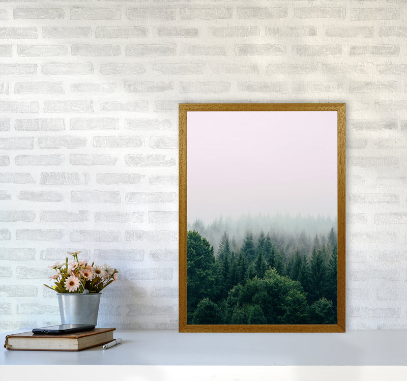 The Fog And The Forest I A2 Oak Frame