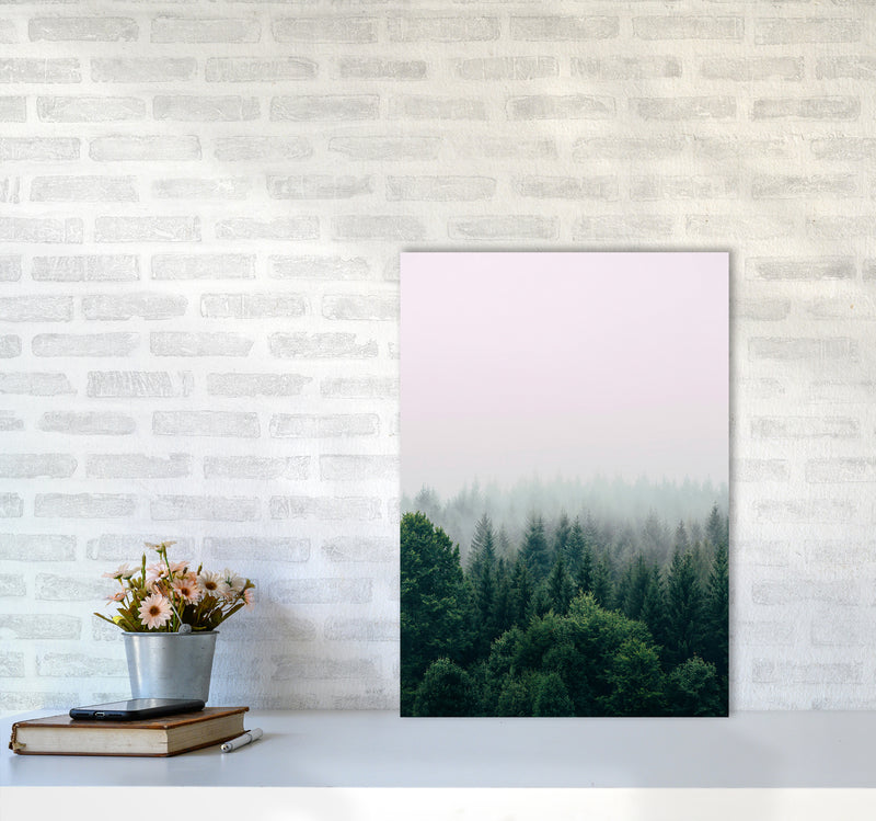 The Fog And The Forest I A2 Print Only