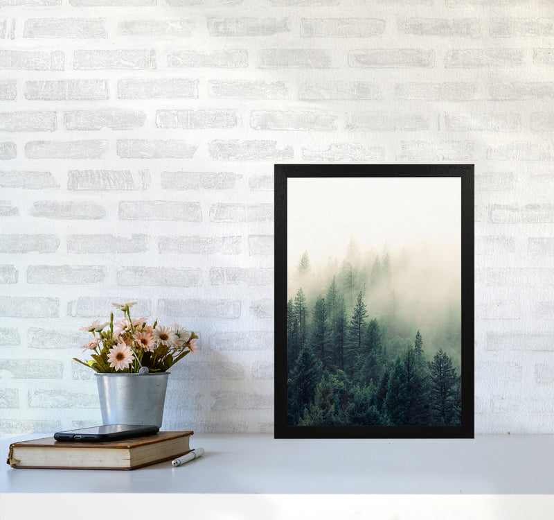 The Fog And The Forest II A3 Black Frame