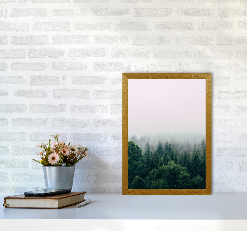 The Fog And The Forest I A3 Oak Frame