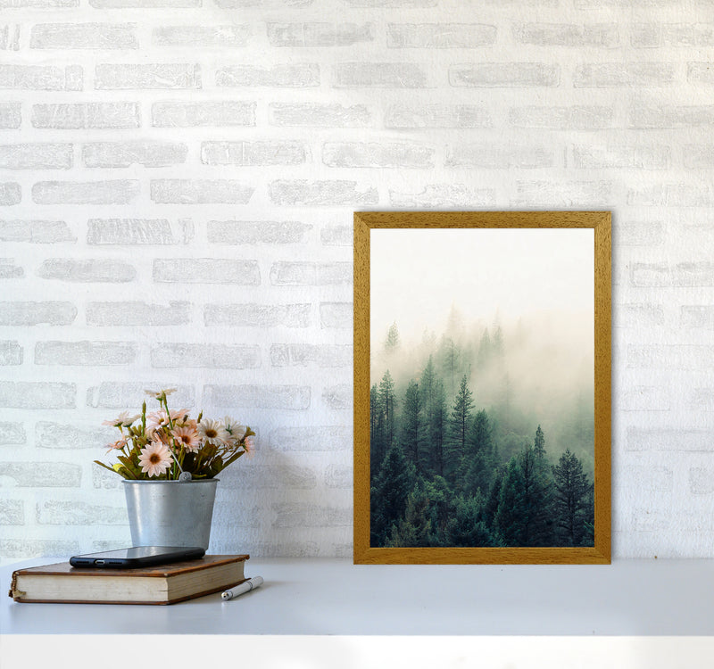 The Fog And The Forest II A3 Oak Frame