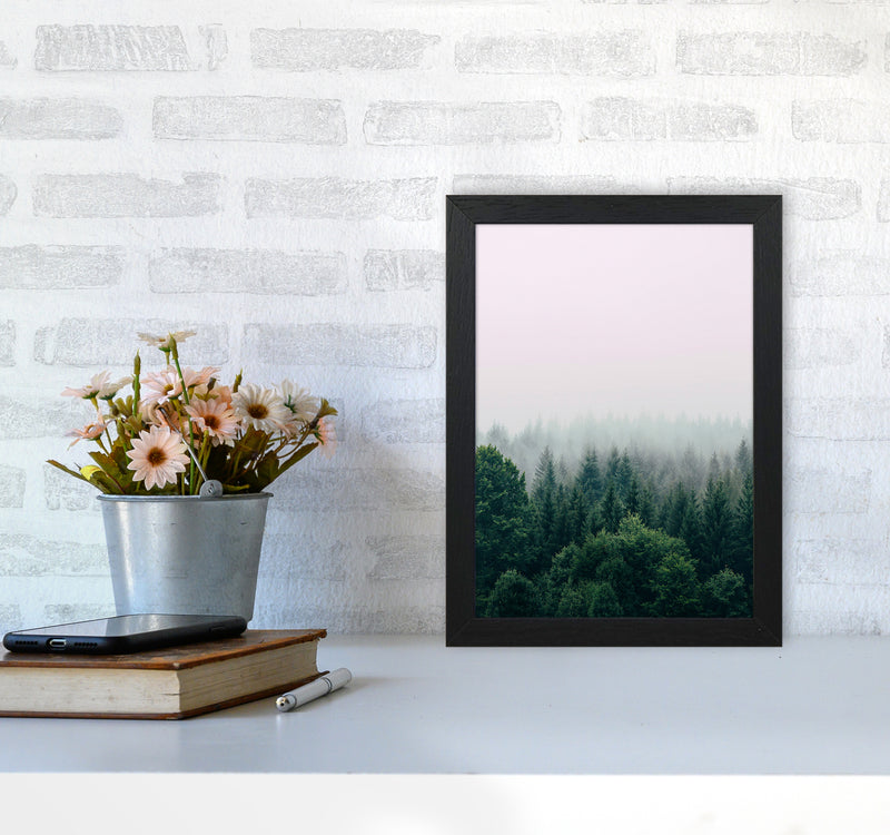 The Fog And The Forest I A4 Black Frame