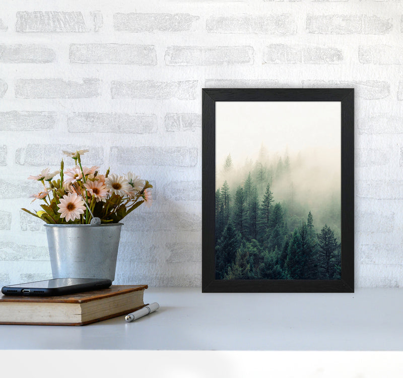 The Fog And The Forest II A4 Black Frame