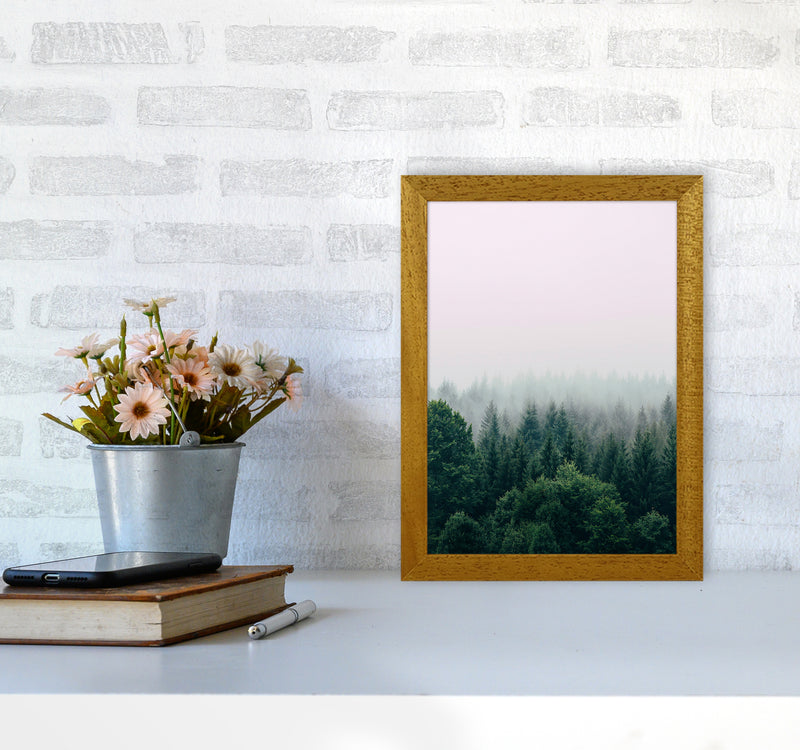 The Fog And The Forest I A4 Oak Frame