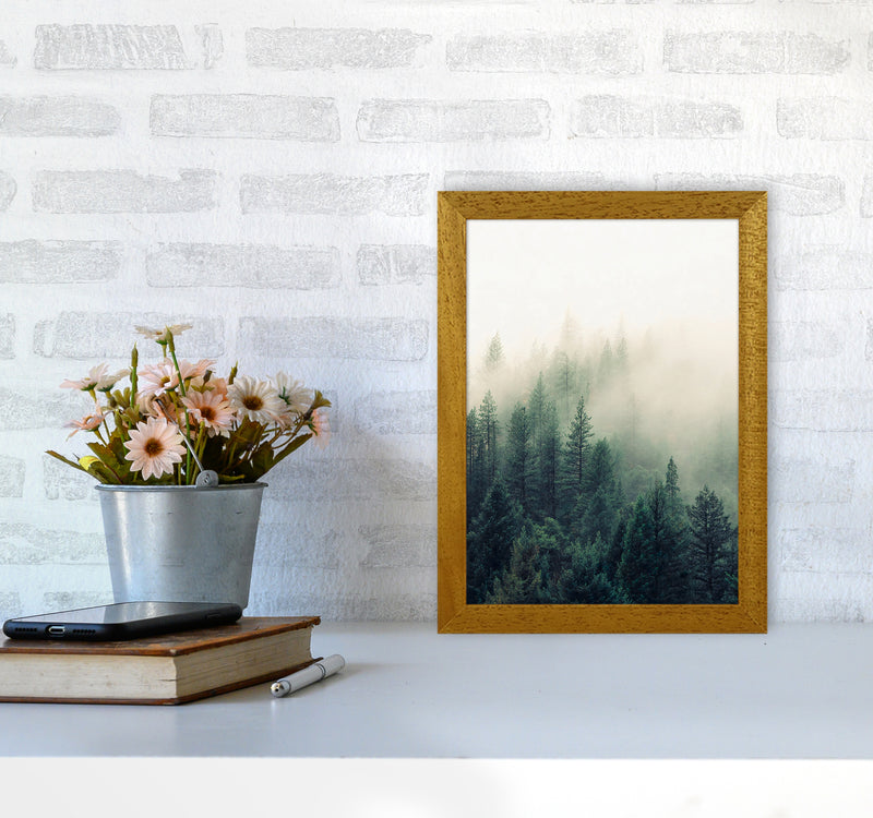 The Fog And The Forest II A4 Oak Frame
