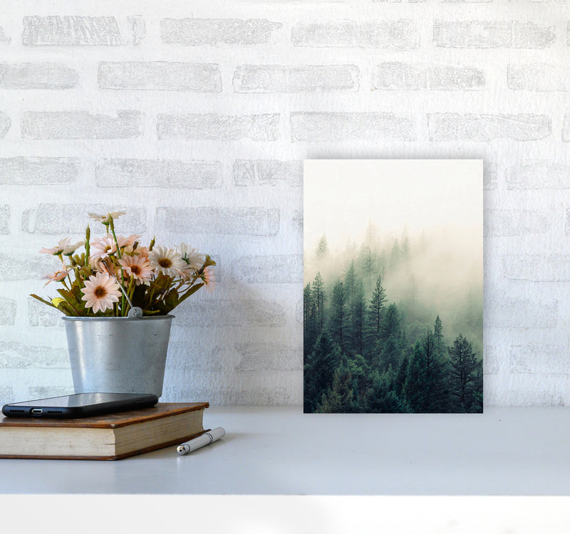 The Fog And The Forest II A4 Print Only