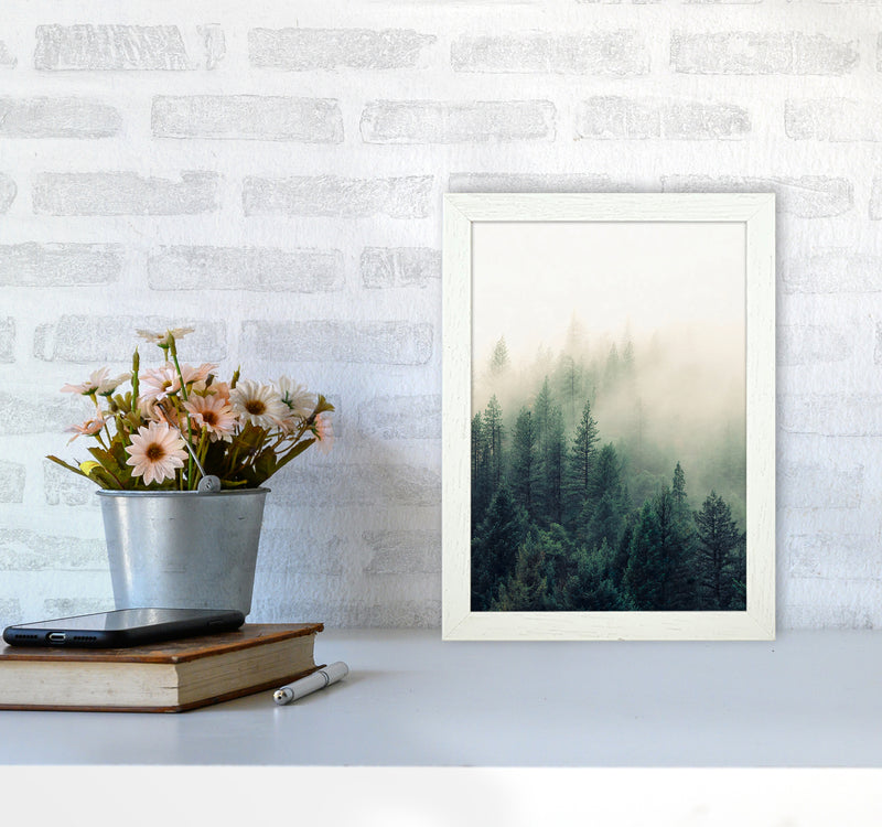 The Fog And The Forest II A4 White Frame
