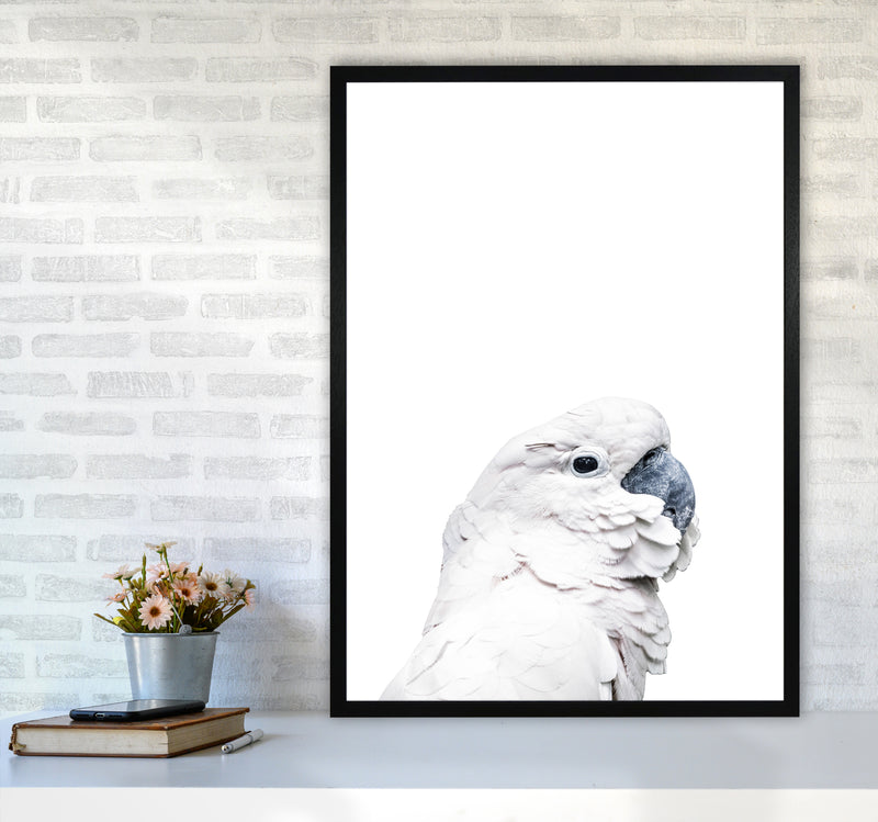White Cockatoo Photography Print by Victoria Frost A1 White Frame