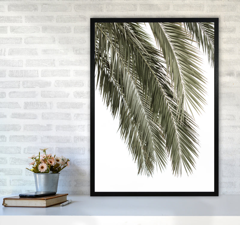 Palms Photography Print by Victoria Frost A1 White Frame