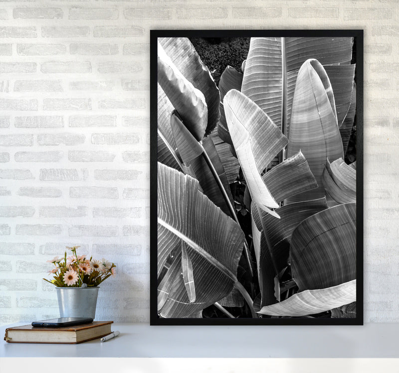 Palms Leafs Photography Print by Victoria Frost A1 White Frame