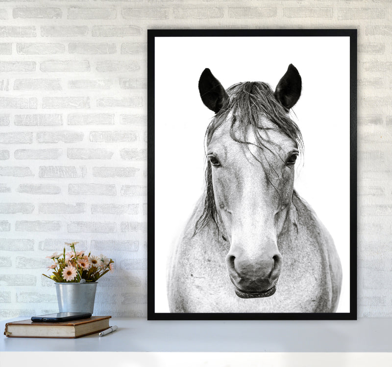 Horse I Photography Print by Victoria Frost A1 White Frame