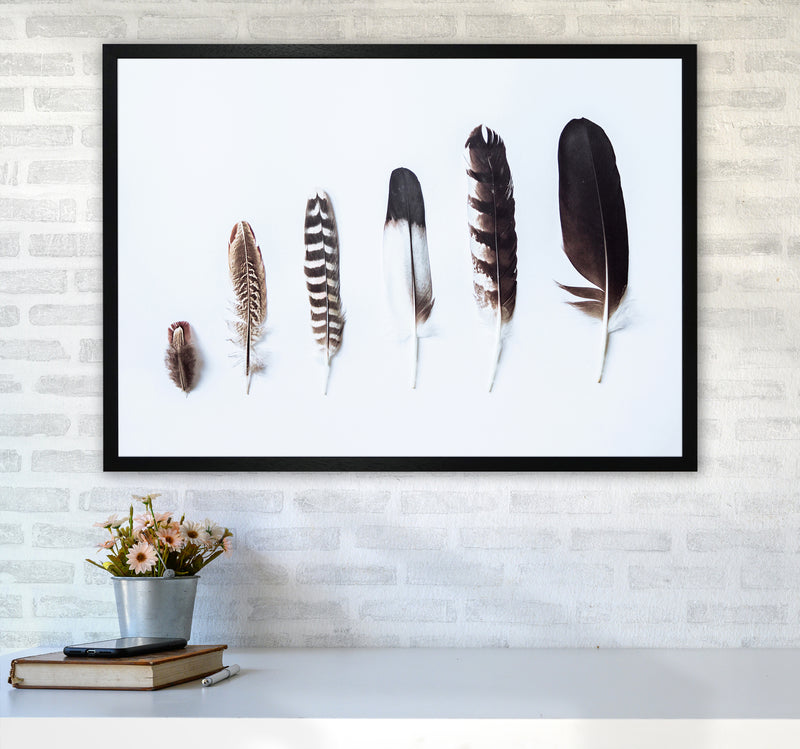 Feathers II Photography Print by Victoria Frost A1 White Frame