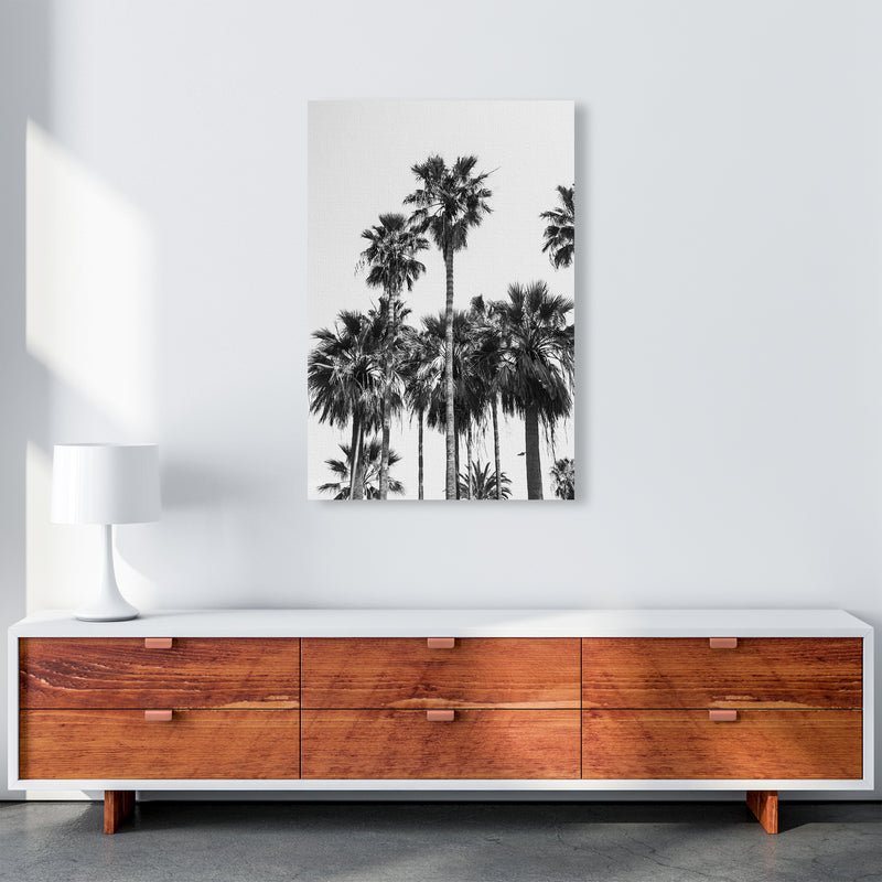 Sabal palmetto II Palm trees Photography Print by Victoria Frost A1 Canvas