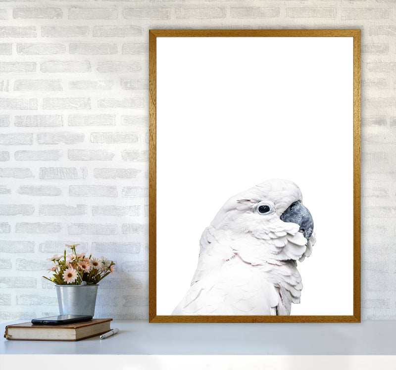 White Cockatoo Photography Print by Victoria Frost A1 Print Only