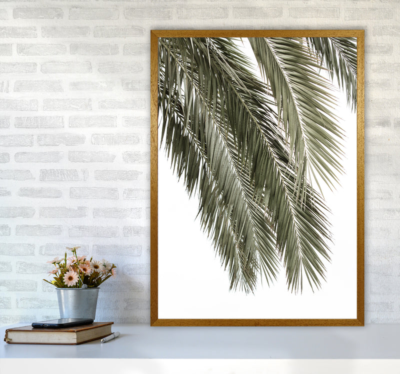Palms Photography Print by Victoria Frost A1 Print Only
