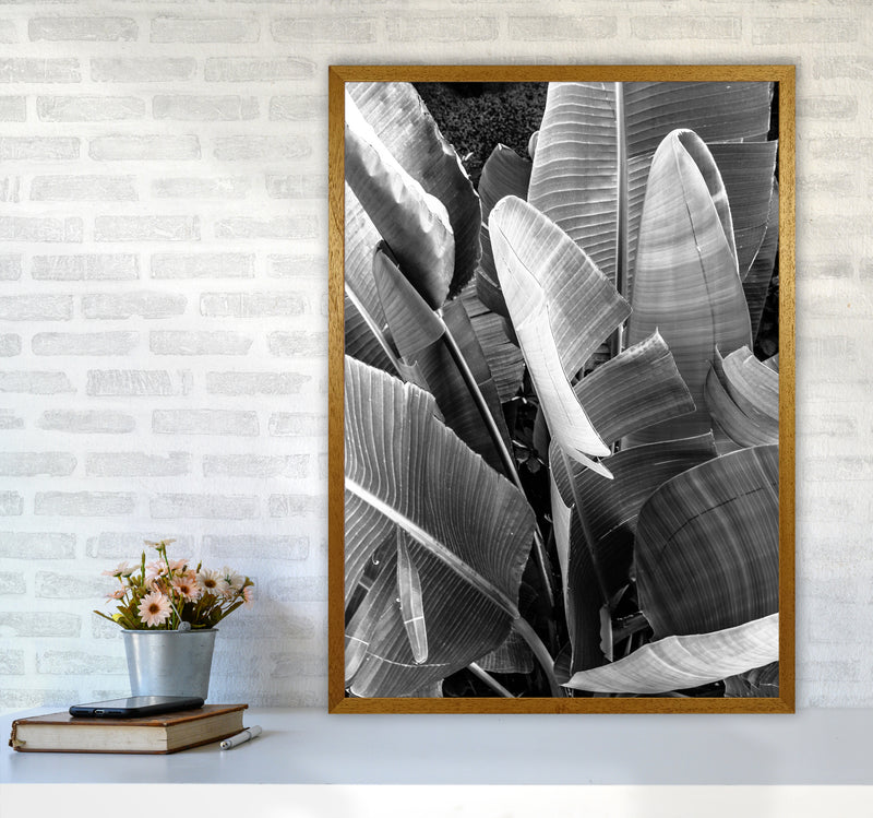 Palms Leafs Photography Print by Victoria Frost A1 Print Only