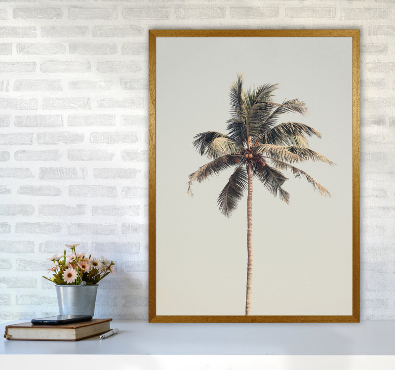 Palm tree by the beach Photography Print by Victoria Frost A1 Print Only