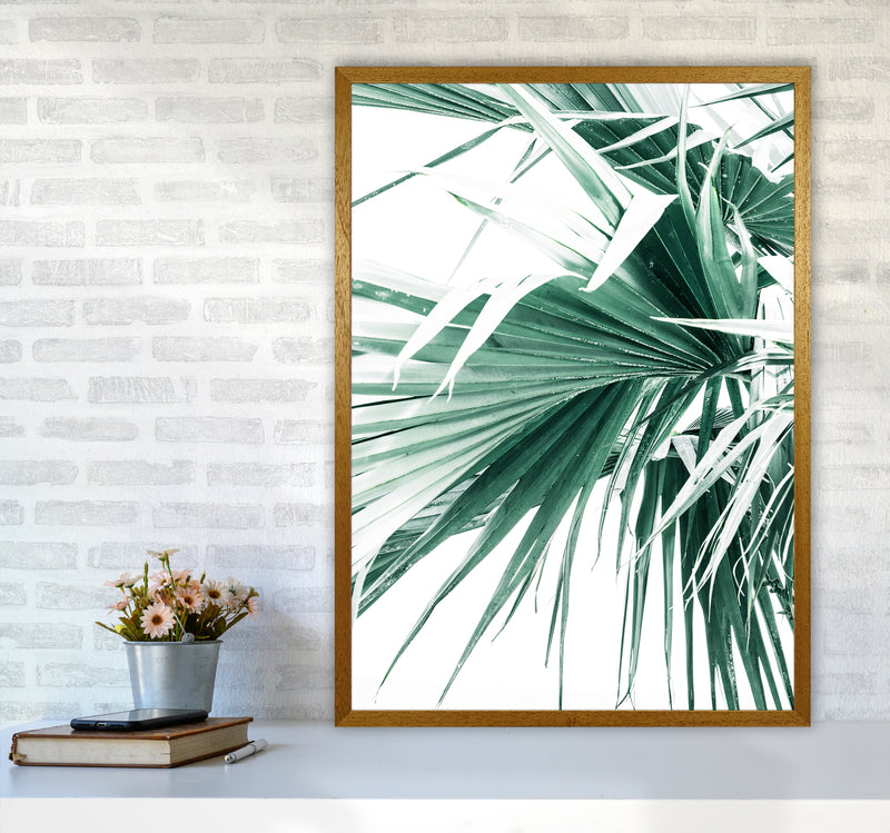 Palm Leaves Photography Print by Victoria Frost A1 Print Only