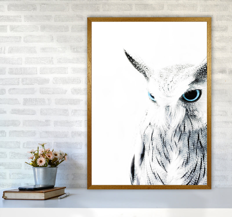 Owl I Photography Print by Victoria Frost A1 Print Only