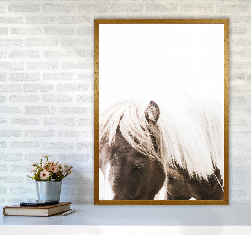 Horse III Photography Print by Victoria Frost A1 Print Only