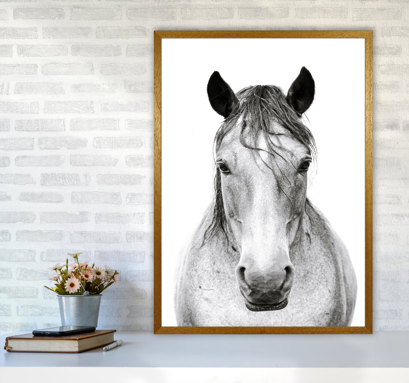 Horse I Photography Print by Victoria Frost A1 Print Only