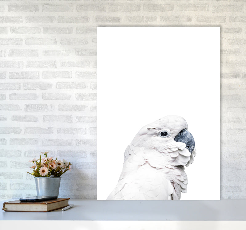 White Cockatoo Photography Print by Victoria Frost A1 Black Frame