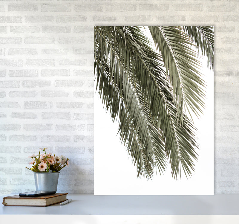 Palms Photography Print by Victoria Frost A1 Black Frame