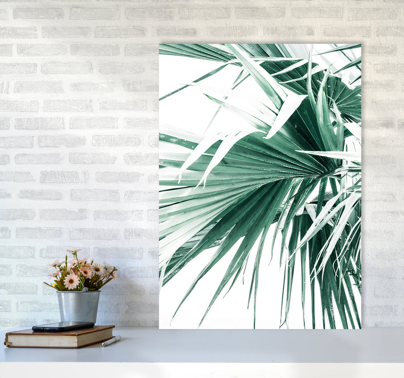 Palm Leaves Photography Print by Victoria Frost A1 Black Frame