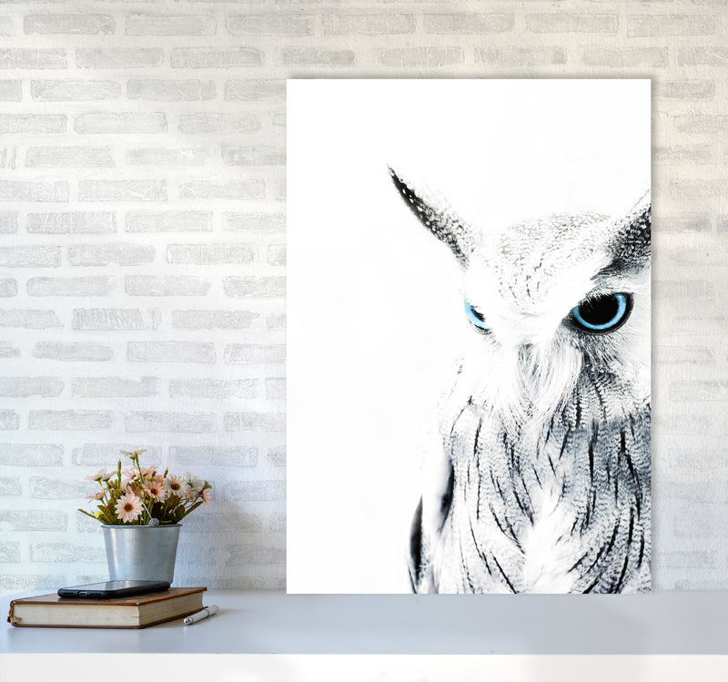 Owl I Photography Print by Victoria Frost A1 Black Frame