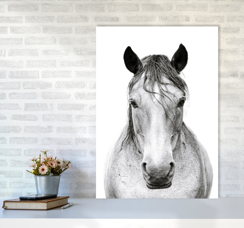 Horse I Photography Print by Victoria Frost A1 Black Frame