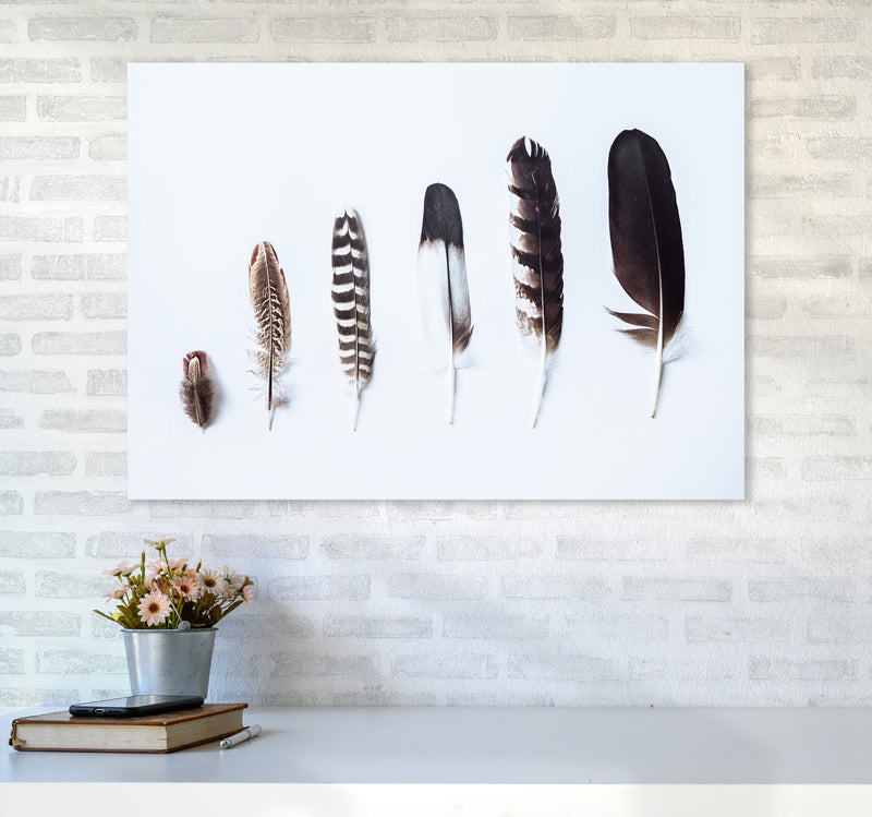 Feathers II Photography Print by Victoria Frost A1 Black Frame