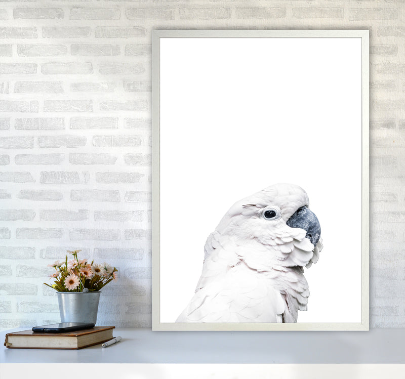 White Cockatoo Photography Print by Victoria Frost A1 Oak Frame