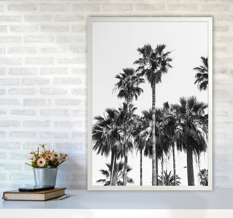 Sabal palmetto II Palm trees Photography Print by Victoria Frost A1 Oak Frame