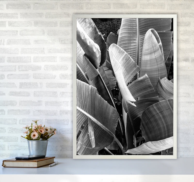 Palms Leafs Photography Print by Victoria Frost A1 Oak Frame