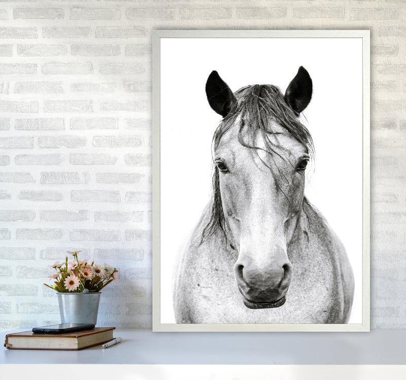 Horse I Photography Print by Victoria Frost A1 Oak Frame